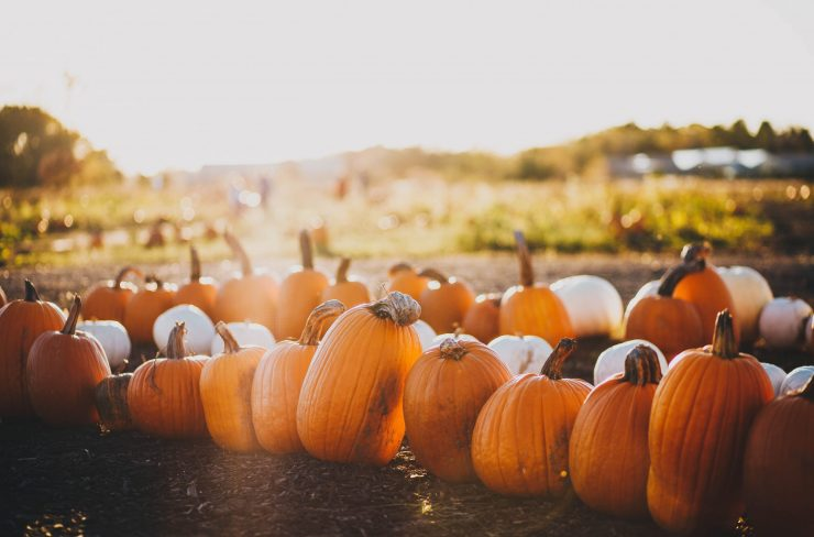 Warm Up Your Marketing Efforts for Fall
